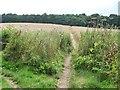 SE3414 : Footpath north  from the Bleakley Dike footbridge by Christine Johnstone