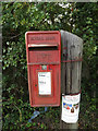 TM1172 : The Bull Main Road Postbox by Adrian Cable