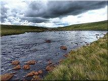 NY8429 : River Tees by Mick Garratt