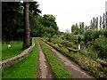 SO3700 : Road between churchyard and river, Llanbadoc by Jaggery