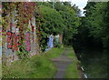 SP1184 : Graffitied wall along the towpath of the Grand Union Canal by Mat Fascione