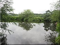 SE2536 : The River Aire at Kirkstall Abbey by Graham Robson