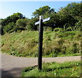 SO8504 : Canalside signpost, Stroud by Jaggery
