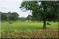 SD6808 : Mowers on Deane Golf Course by Bill Boaden