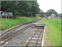SH9234 : Bala Lake Halt railway station, Gwynedd by Nigel Thompson