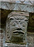 SO4430 : Kilpeck: The church of St. Mary and St. David: Eastern aspect corbel table carving 5 by Michael Garlick