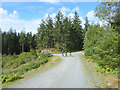 SD3493 : Mountain bikers at junction near Black Apple Tree, Grizedale Forest Park by Gary Rogers