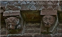 SO4430 : Kilpeck: The church of St. Mary and St. David: Muzzled bear corbel by Michael Garlick