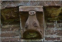 SO4430 : Kilpeck: The church of St. Mary and St. David: Cow head corbel by Michael Garlick