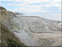 SS8872 : Blue Lias limestone ledges beyond Witches Point by Dr Duncan Pepper