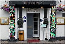 NT4728 : Street art in Selkirk by Walter Baxter
