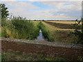TL3768 : Ditch crossing Cow Fen Road by Hugh Venables