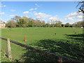 TL4164 : Horse paddock, Oakington by Hugh Venables