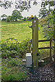SJ8977 : Radio controlled fence post! by Anthony O'Neil