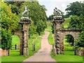 SK3820 : The Golden Gates, Staunton Harold Estate by David Dixon