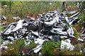 NY5786 : NY5786 Halifax DK116 by John Ryles