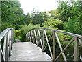 SE3044 : Footbridge in the Himalayan Garden, Harewood House by Humphrey Bolton
