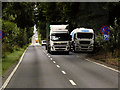 TF7611 : Swaffham Road (A47), Layby near Narborough by David Dixon