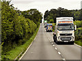 TF7611 : A Procession of Goods Vehicles on the A47 by David Dixon