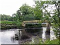 NY6761 : Footbridge over River South Tyne near Featherstone Castle by Andrew Curtis