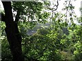 NY6760 : Glimpse of Featherstone Castle through trees on west bank of River South Tyne by Andrew Curtis
