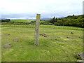V9847 : The Kilnaruan Stone by Oliver Dixon