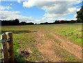 SO5932 : Large field, Brockhampton by Jaggery