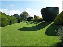 SP0327 : Sudeley Castle - Yew Tree Walk by Rob Farrow