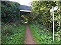 SK6459 : Bridge over Southwell trail by Steve  Fareham
