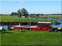 TL5369 : Henderika moored in Upware, Cambridgeshire by Richard Humphrey
