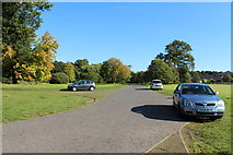 NS6859 : Exit Road from Bothwell Castle by Billy McCrorie