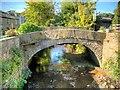 SD7920 : Ogden Bridge at Irwell Vale by David Dixon