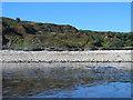 NZ4442 : Beach and cliffs south of Warren House Gill by Mike Quinn