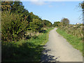 NZ3762 : Foot and cycle path at Whiteleas by Oliver Dixon