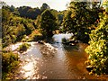 SD7912 : Burrs Country Park, River Irwell by David Dixon