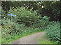 TL1304 : Cycle route near Chiswell Green by Malc McDonald