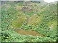 NY4215 : Overgrown pool, below Heck Crag by Christine Johnstone