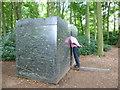 TF7829 : Man attempting to get into modern art by Sandra Humphrey