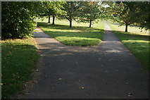 TQ2780 : View of a fork in the paths in Hyde Park by Robert Lamb