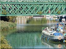 TQ3882 : River Lee, Bromley by Stephen McKay