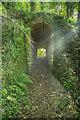ST6758 : Tunnel on footpath by Guy Wareham