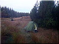 NC9147 : Breaking camp in the forestry between Sletill Hill and Strath Halladale by John Lucas
