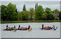 SO8891 : Dragon boat racing at Himley Hall, Staffordshire by Roger  Kidd