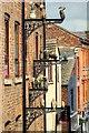 SJ8498 : Ceramic Birds in John Street (1) by David Dixon