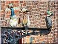 SJ8498 : Ceramic Birds in John Street (2) by David Dixon