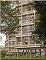 TQ2174 : Housing blocks, Alton West Estate, Roehampton by Jim Osley