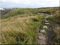 SW6617 : Stepping stones on the South West Coast Path by David Smith