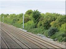 SU5985 : Pylons along the cutting by Bill Nicholls