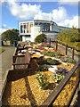 SH8378 : Alpine garden, Welsh Mountain Zoo by Richard Hoare
