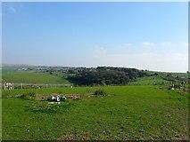 TQ3305 : Race Hill by Simon Carey